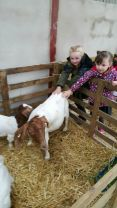 P1 trip to Drumrammer Farm