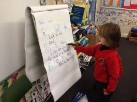 P2 Y sort letters, words and sentences